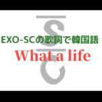 What a life/EXO-SC K-POP歌詞和訳で韓国語を学ぼう